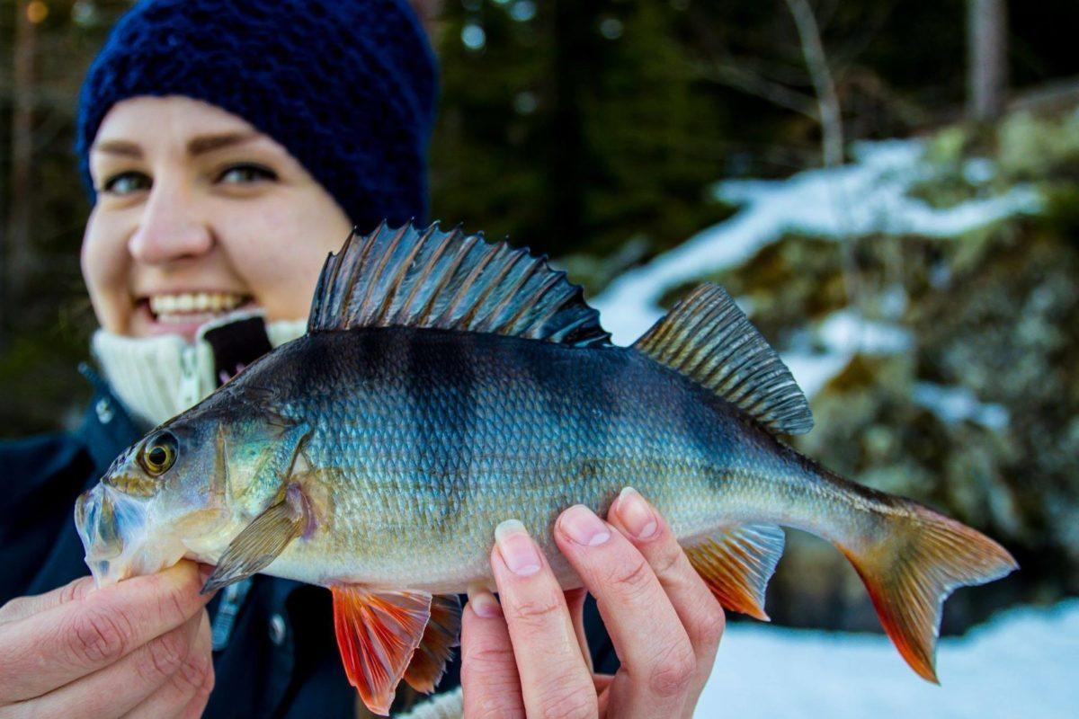 Fiskejenter i Marka – Isfiskekurs! 12. Januar.