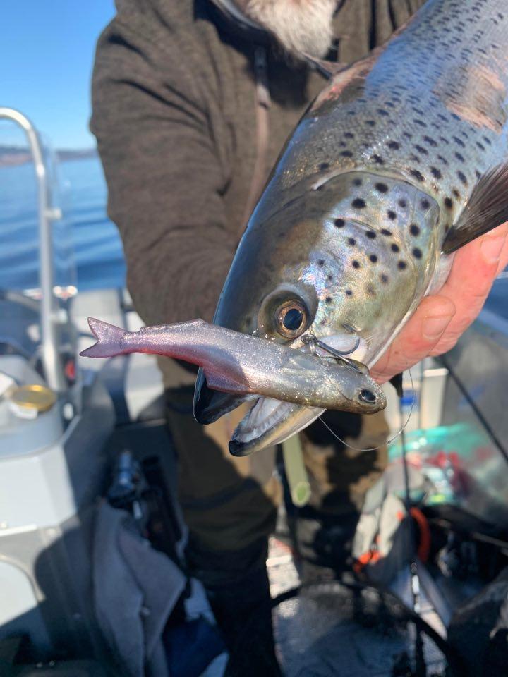 Ørretfiske på Mjøsa 21.mars 2020 (med video)