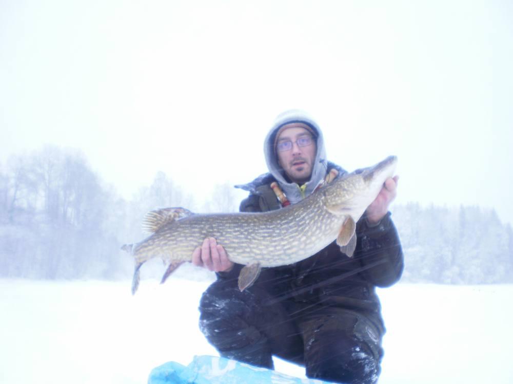 Suveräne Niclas Andersson med gädda nr 12 över 10kg i år!!