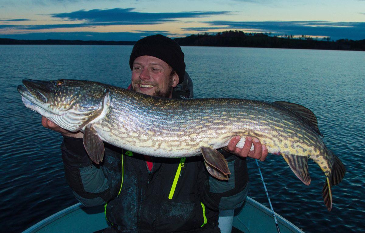 Andreas Johansen smiler av go grunn :-) Vi snakker gris.