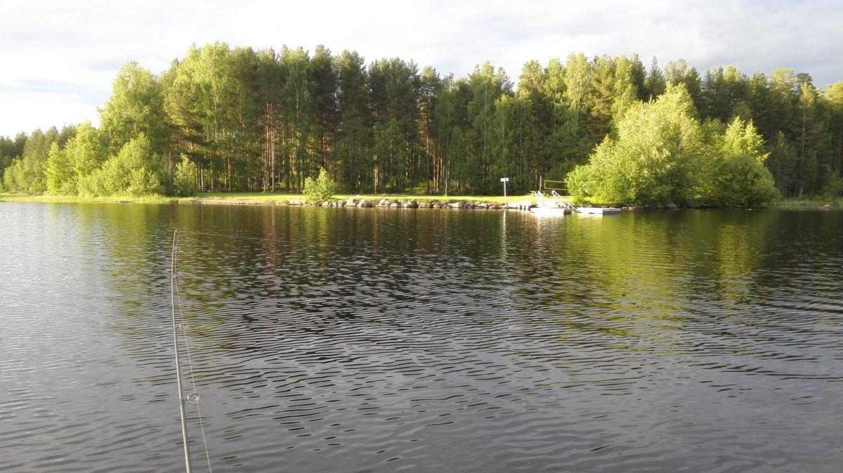 Abbormesterskap 31. august på Rokosjøen.